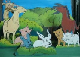 Kể chuyện Cuộc chạy đua trong rừng