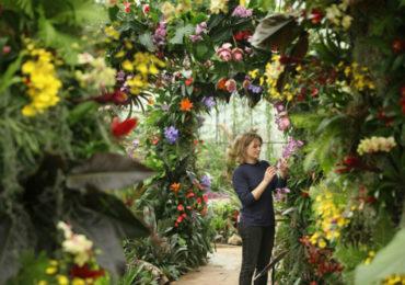 Tả vườn hoa nhà em